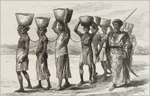 Fun facts of slavery- Image of The Rise of Slavery